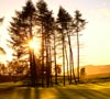 Gleneagles PGA golf course, Scotland